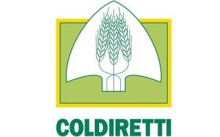 convenzionato Coldiretti, agevolazioni Coldiretti, Rieti