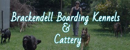Brackendell Boarding Kennels & Cattery logo