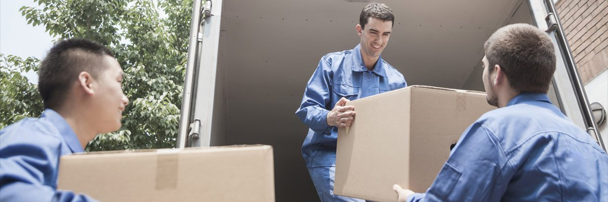 thompson removals quote form removals package