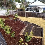 Multi-level garden beds