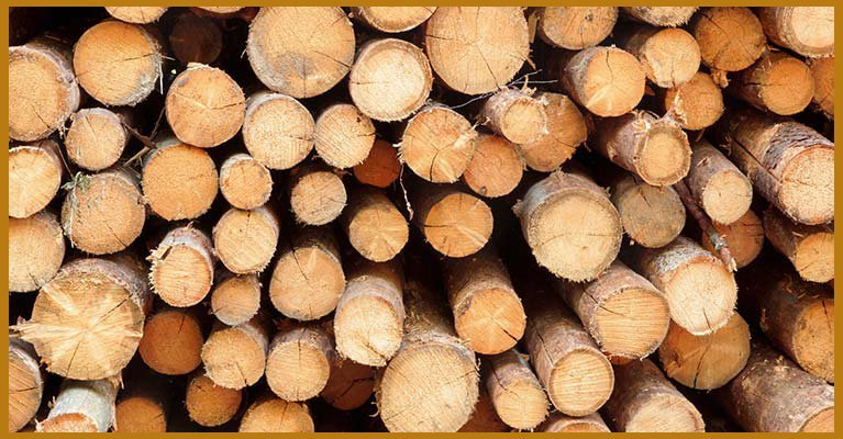 Building Supplies South West Sydney Hayters Timber And