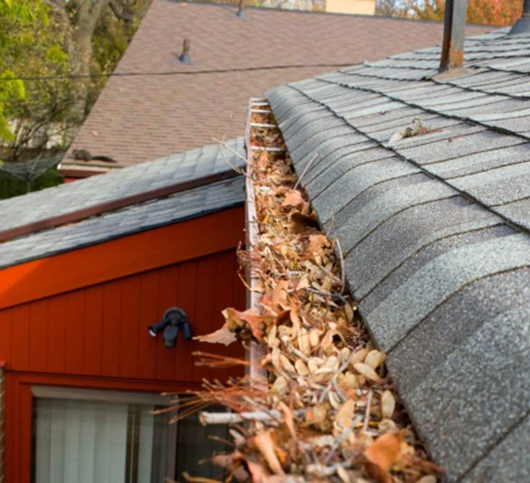 top cat roof and gutter services gutter leafs on gutter