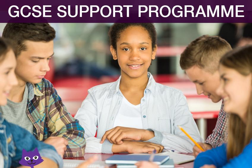 GCSE Support Programme
