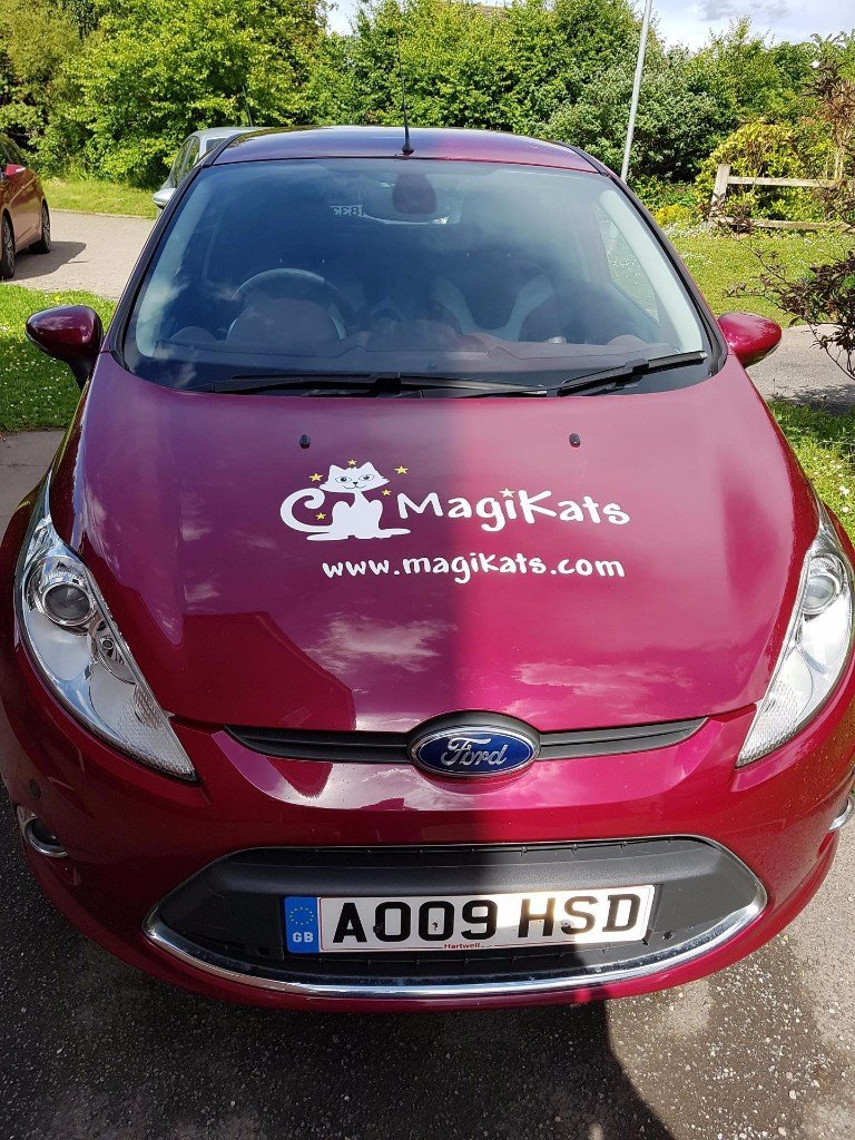 MagiKats Hereford Car 2