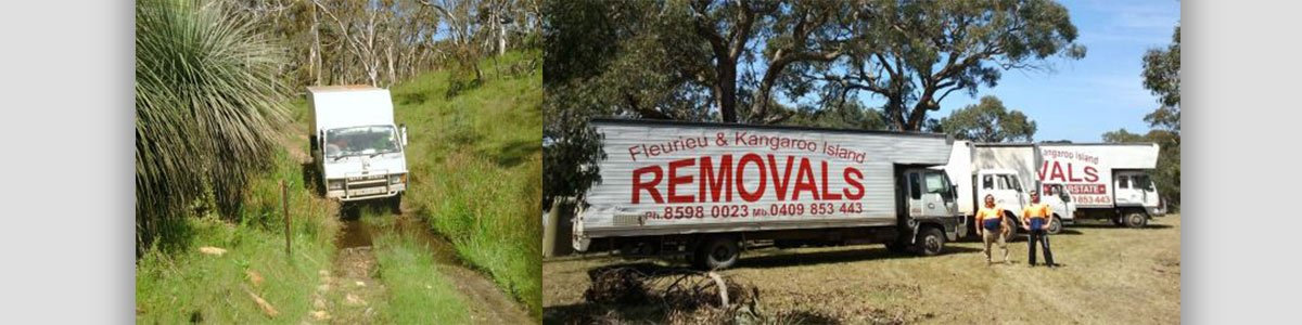 fleurieu peninsula removalists our business van on field and parking