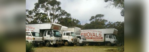 fleurieu peninsula removalists our business vans parked