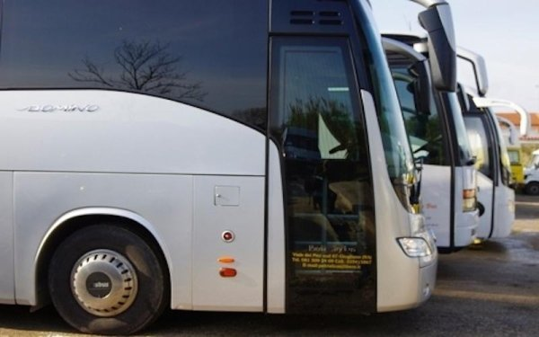 ampio parco bus