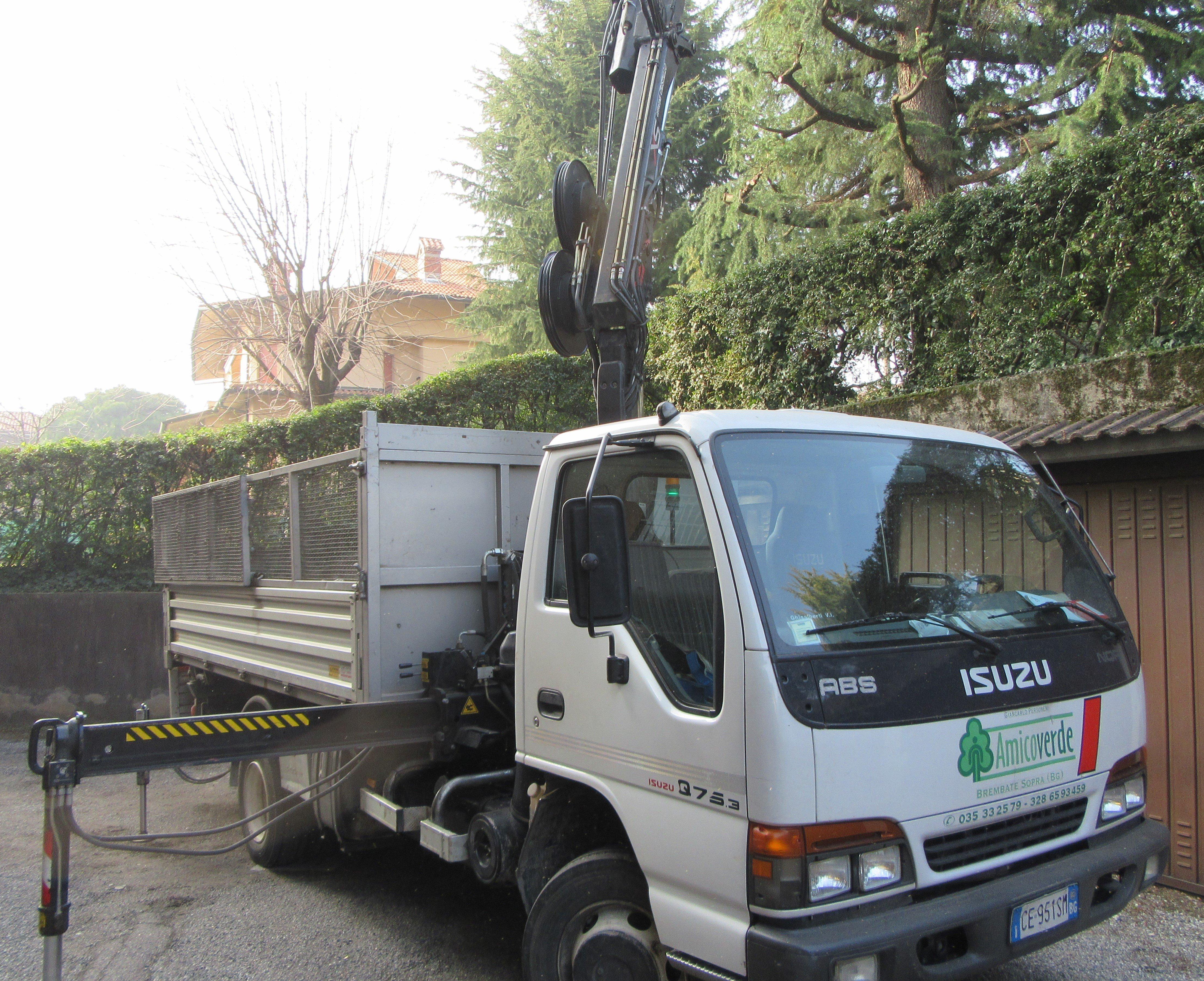 camioncino per potatura