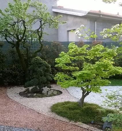 prati in erba naturale Vercelli