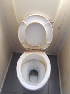 dirty toilet before cleaning