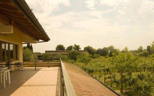 una terrazza con vista del vigneto