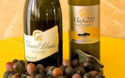 una bottiglia di spumante e un vino bianco frizzante
