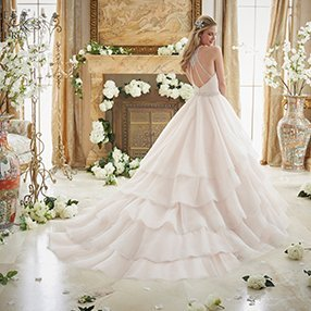 back strap wedding dress