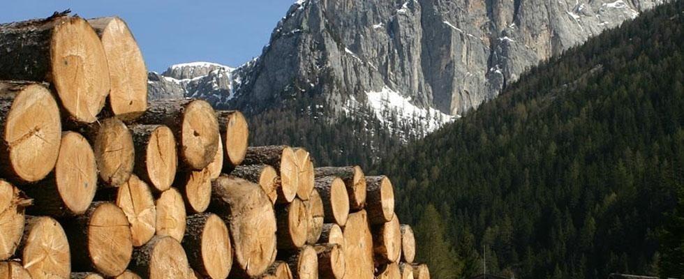 Vednita legna da Ardere Aosta