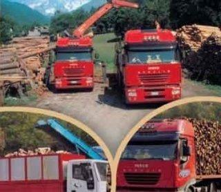 Le Bois legname