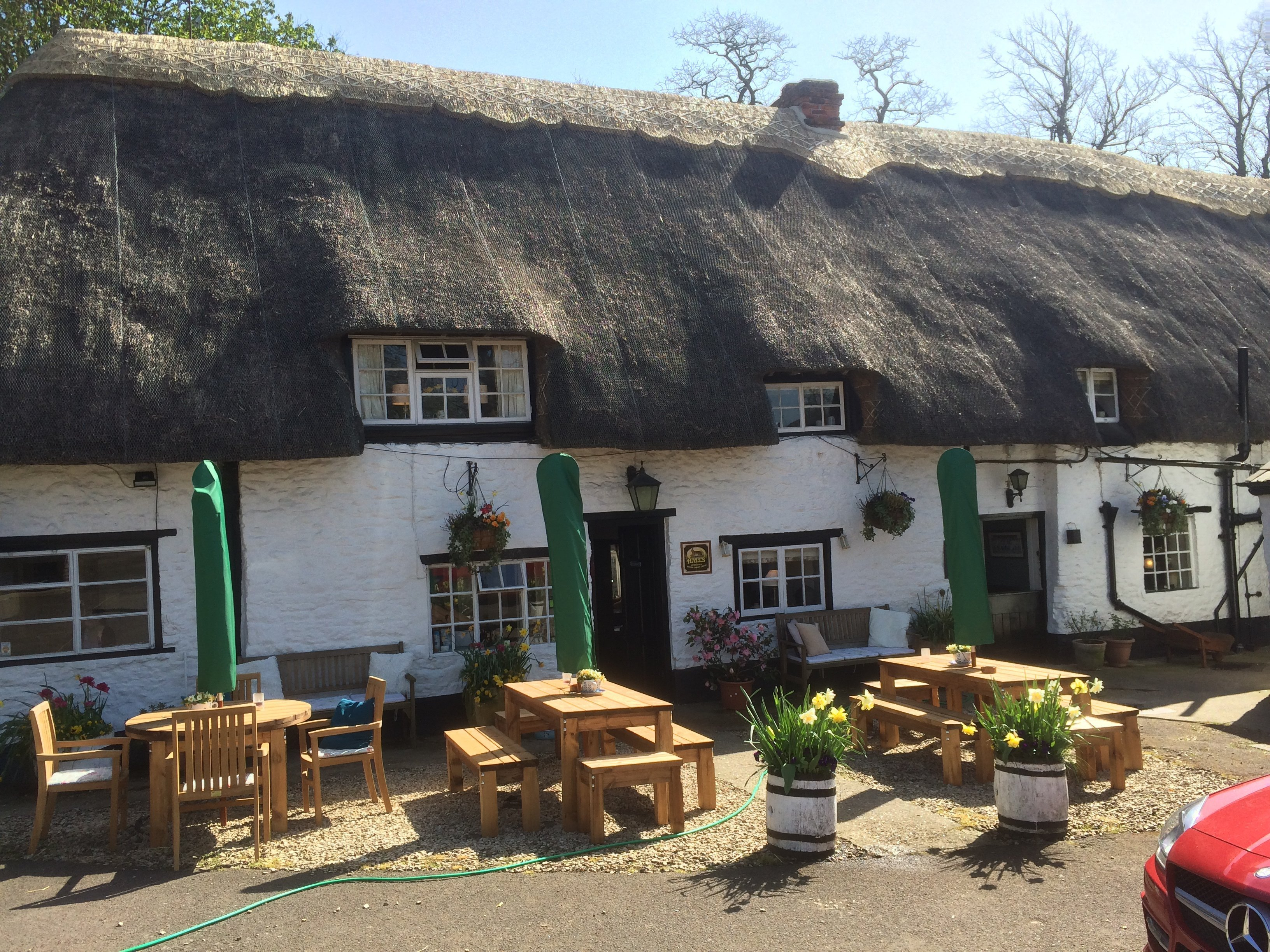 Thatched roof bar