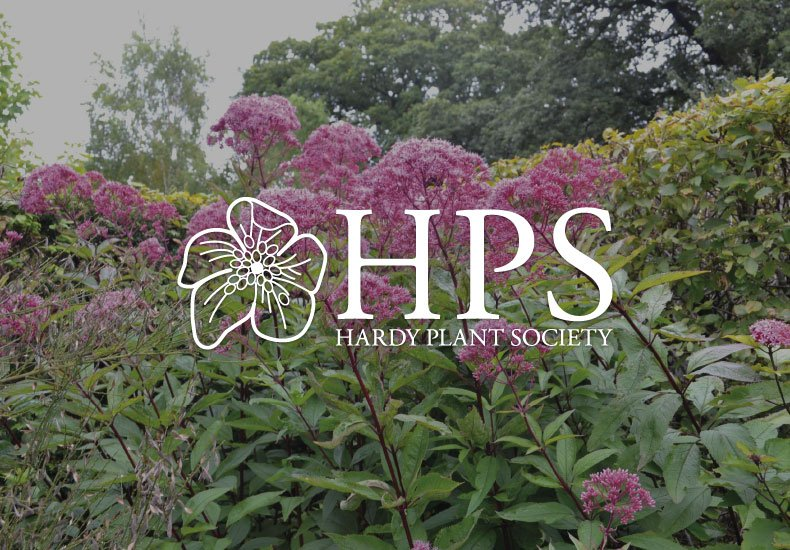 hardy plant society logo