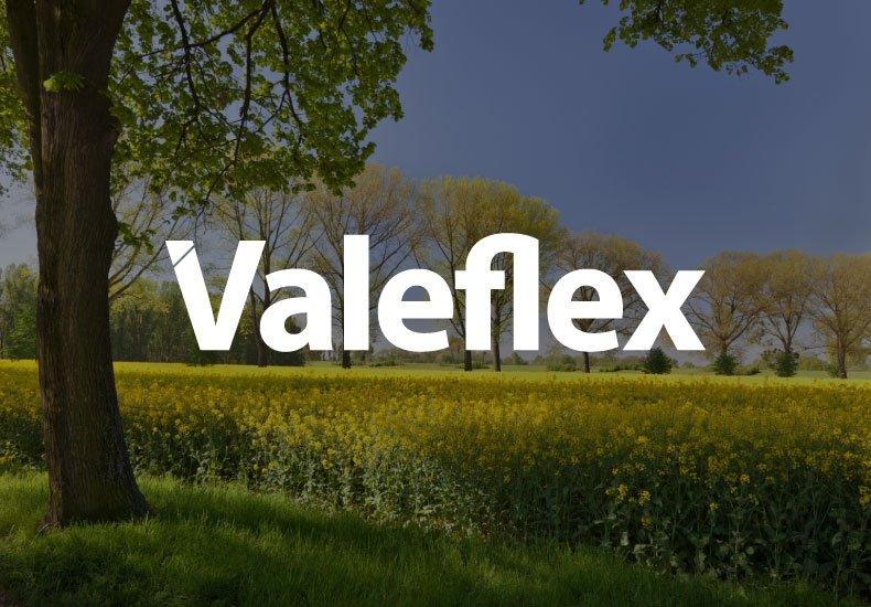 valeflex logo