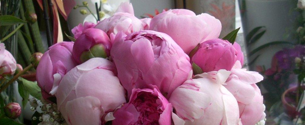Bouquet Ipericum
