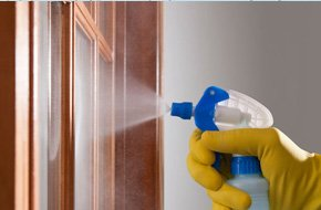Cleaning product being sprayed onto an internal door with glass panels