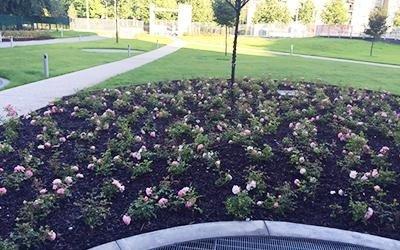 giardino banca