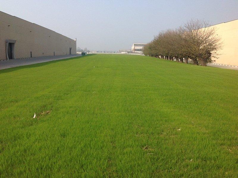 area verde azienda