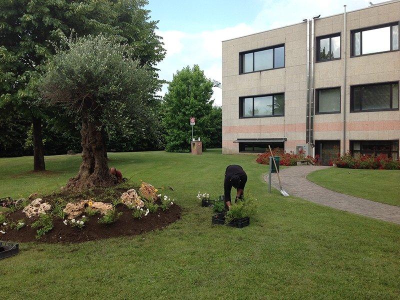 manutenzione giardino aziendale