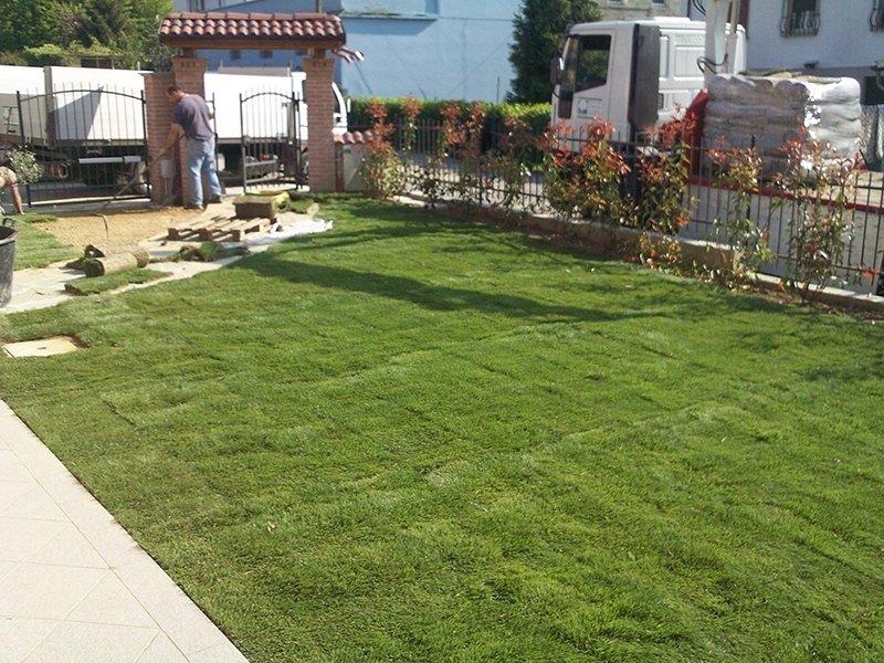 Giardini privati pavia andrea bariani giardini for Realizzazione giardini privati