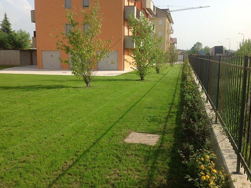 Giardini privati pavia andrea bariani giardini - Alberi condominiali in giardini privati ...