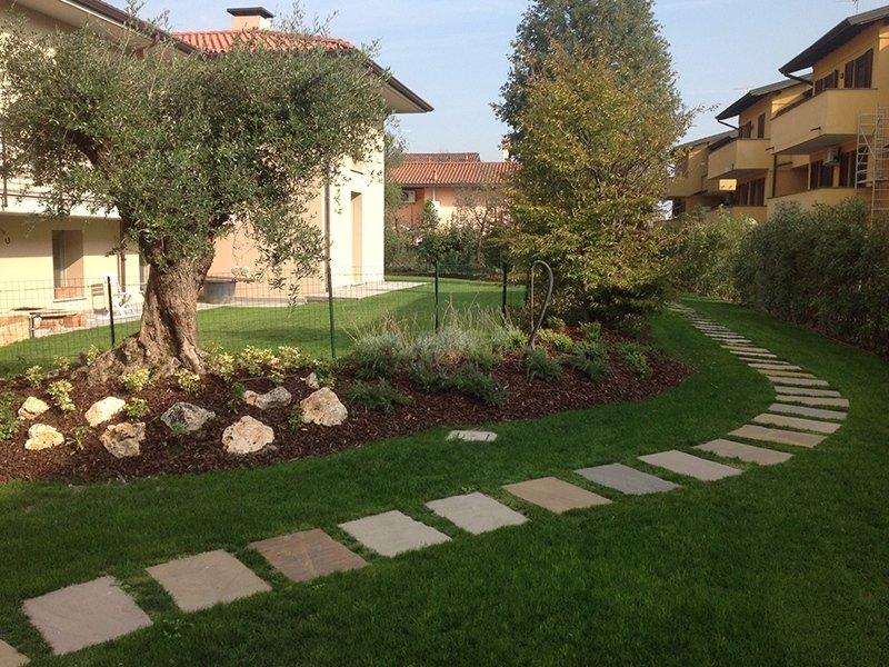Giardino mediterraneo pavia andrea bariani giardini for Progettazione aiuole