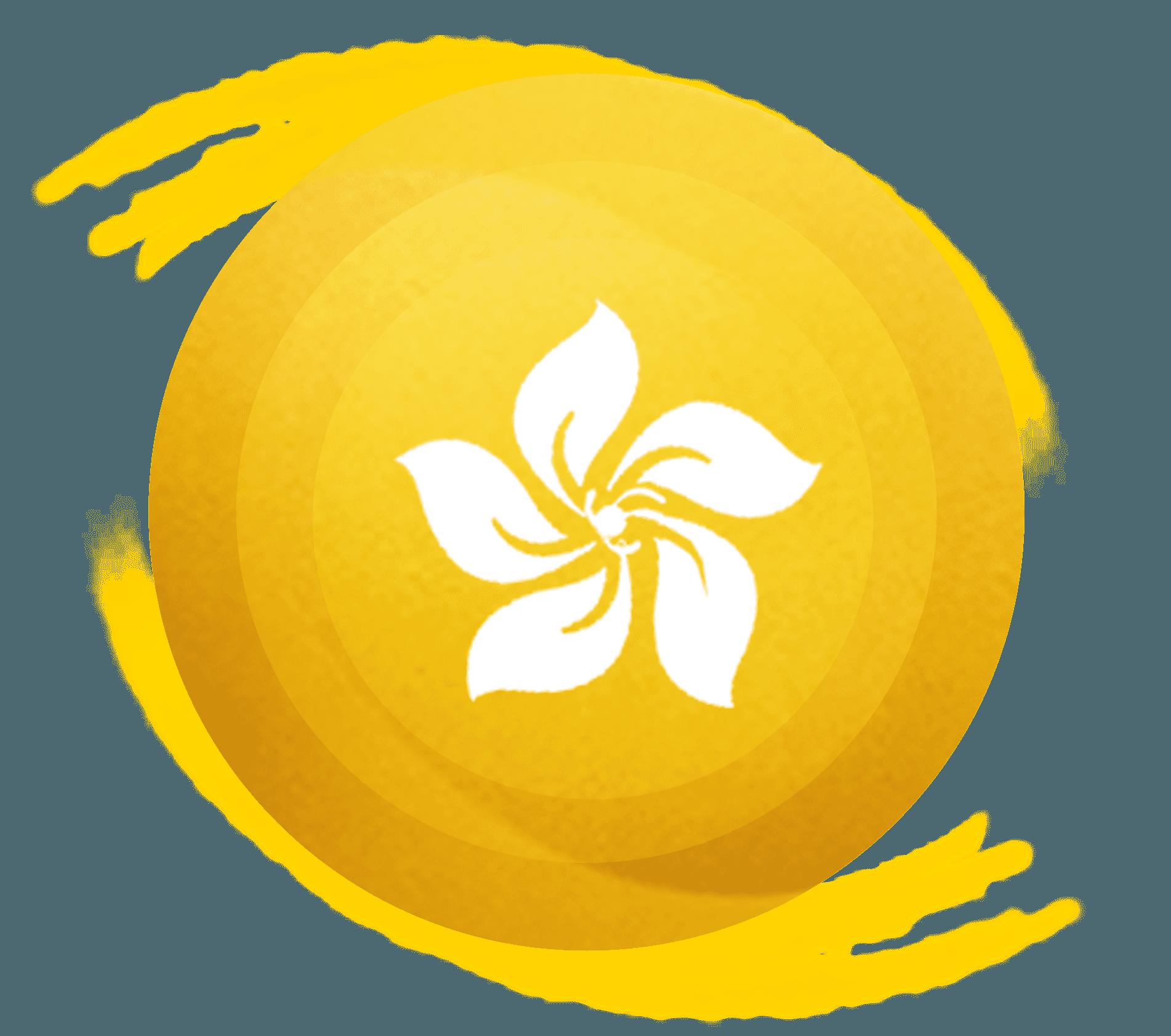 China massage leipzig leipzig