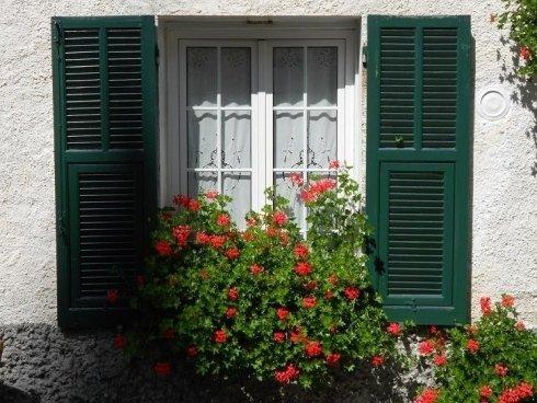 persiane in legno e fiori in giardino