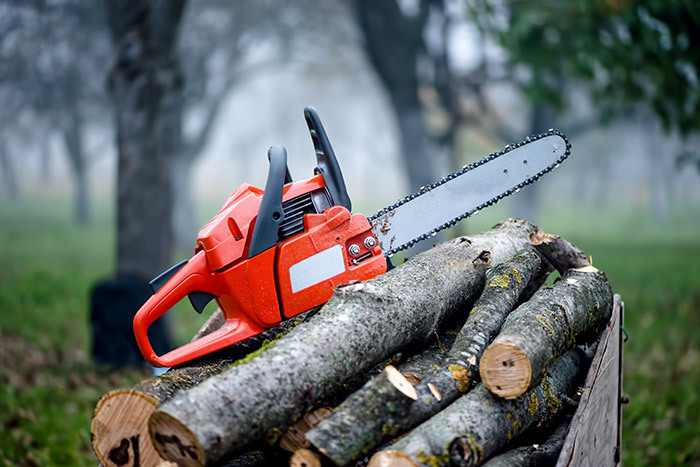 Chainsaw servicing in Tokoroa