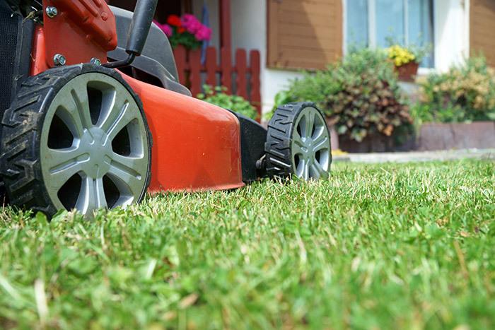 Lawnmowers in Whakamaru