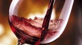 enoteca, vini rossi, cantina vini