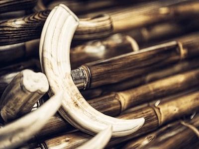 wooden shafts for umbrellas