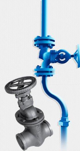 metal valve in front of blue valve