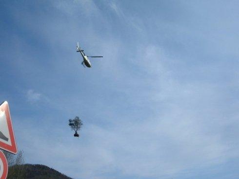 trasporto in elicottero piante