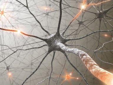 Specialista in neurologia, psichiatria, neurofisiopatologia e medicina legale