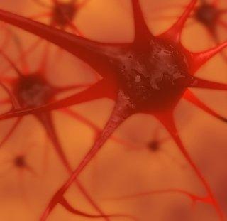 Neurologia, medicina legale, psichiatria, assistenza psichiatrica