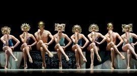 scuola ballerini classici, scuola danzatori, scuola danzatori classici