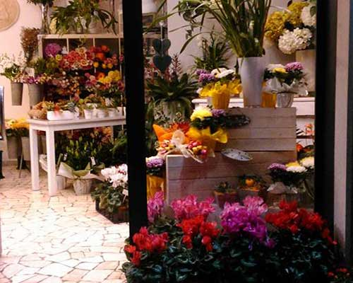 dei vasi di fiori colorati da un fiorista