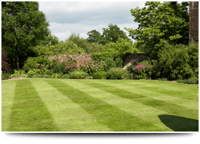 For landscaping services in Stourbridge call Bridgwater Landscapes