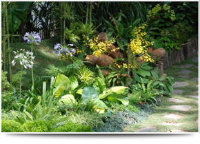 For garden designers in Stourbridge call Bridgwater Landscapes