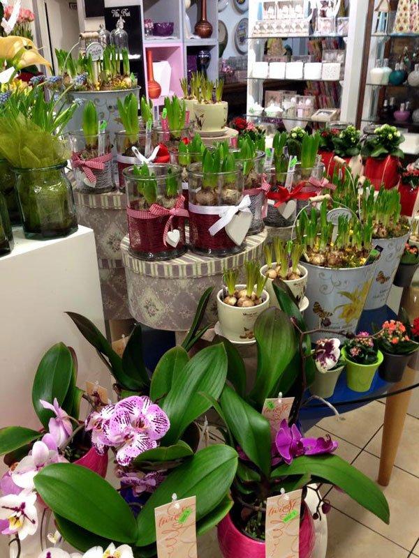 composizioni floreali varie