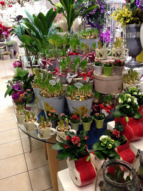 allestimento composizioni floreali