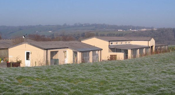 For kennels in  Callington call Lower Norton Farm Kennels & Cattery