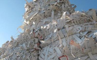smaltimento rifiuti carta padova