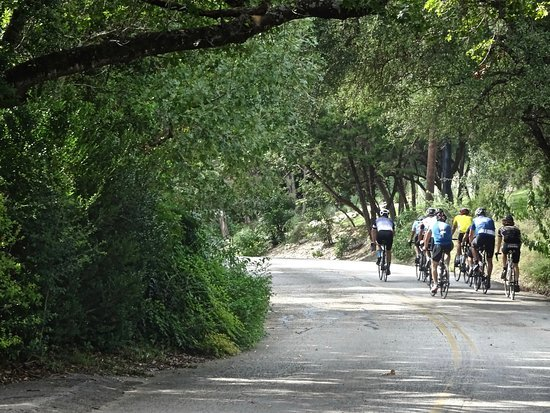 cyclists riding cycling camp in Fredericksburg Texas