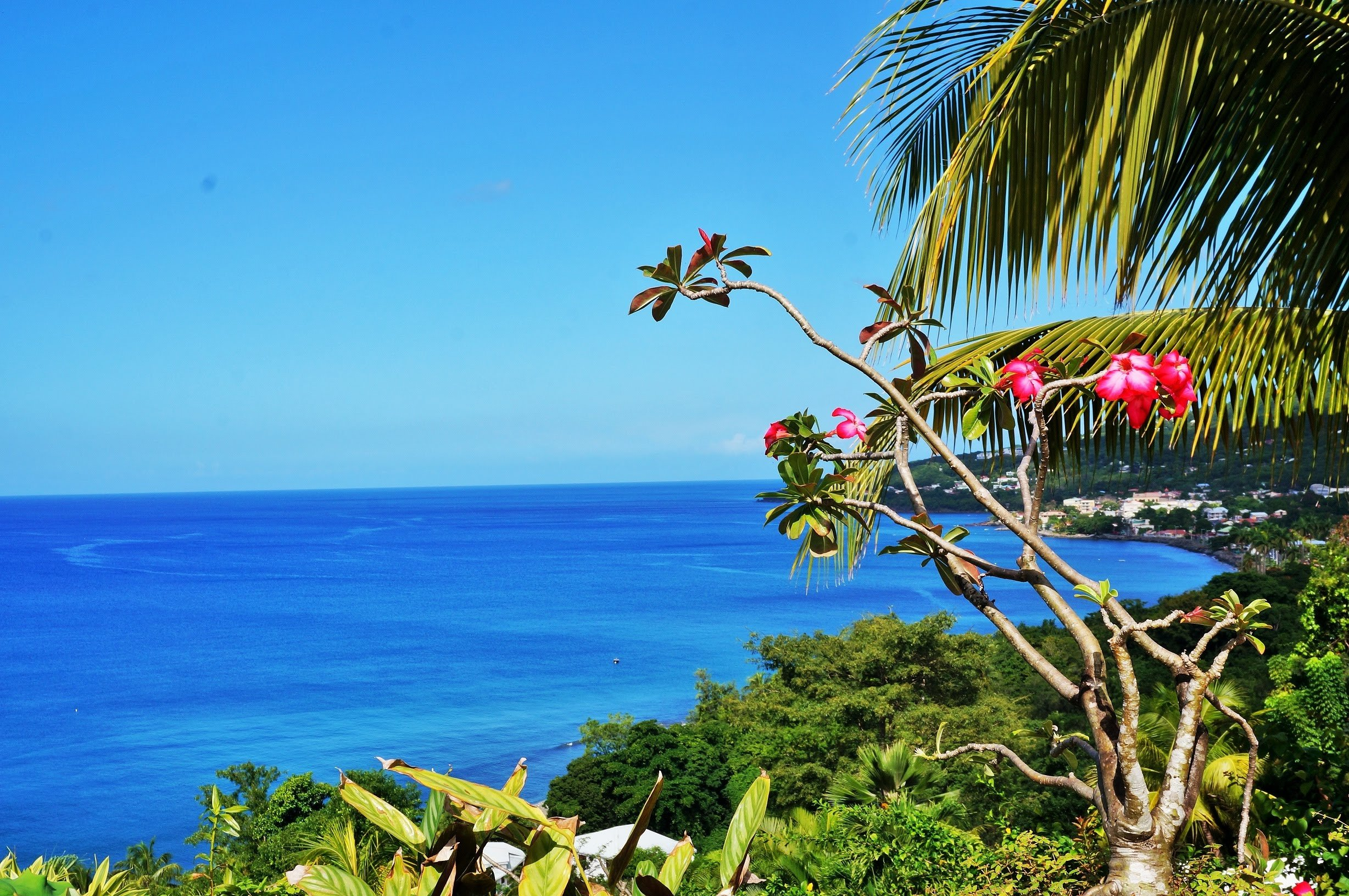 Coastal view seen at cycling camp in Guadeloupe